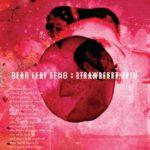 Neuer Song: Dead Leaf Echo – Strawberry Skin