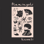 Video: Flamingods – Mixed Blessings