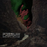 Review: Possum – Electric Pickle