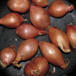 Review: Ty Segall - Fried Shallots