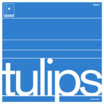Review: Maston – Tulips