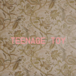 Video: Insecure Men - Teenage Toy
