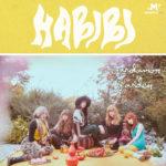 Review: Habibi – Cardamom Garden