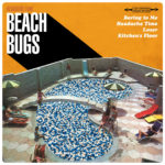 Review: Beach Bugs - Headache Time