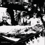 Review: Dead Sea Apes - The Free Territory