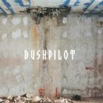Neuer Song: Bushpilot - 1993