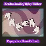 Neue EP: Kendra Amalie/Ryley Walker - Papaya In A Hound's Tooth