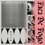 Review: GNOD & João Pais Filipe - Faca De Fogo
