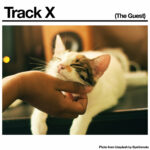 Neuer Song: Black Country, New Road - Track X (The Guest)