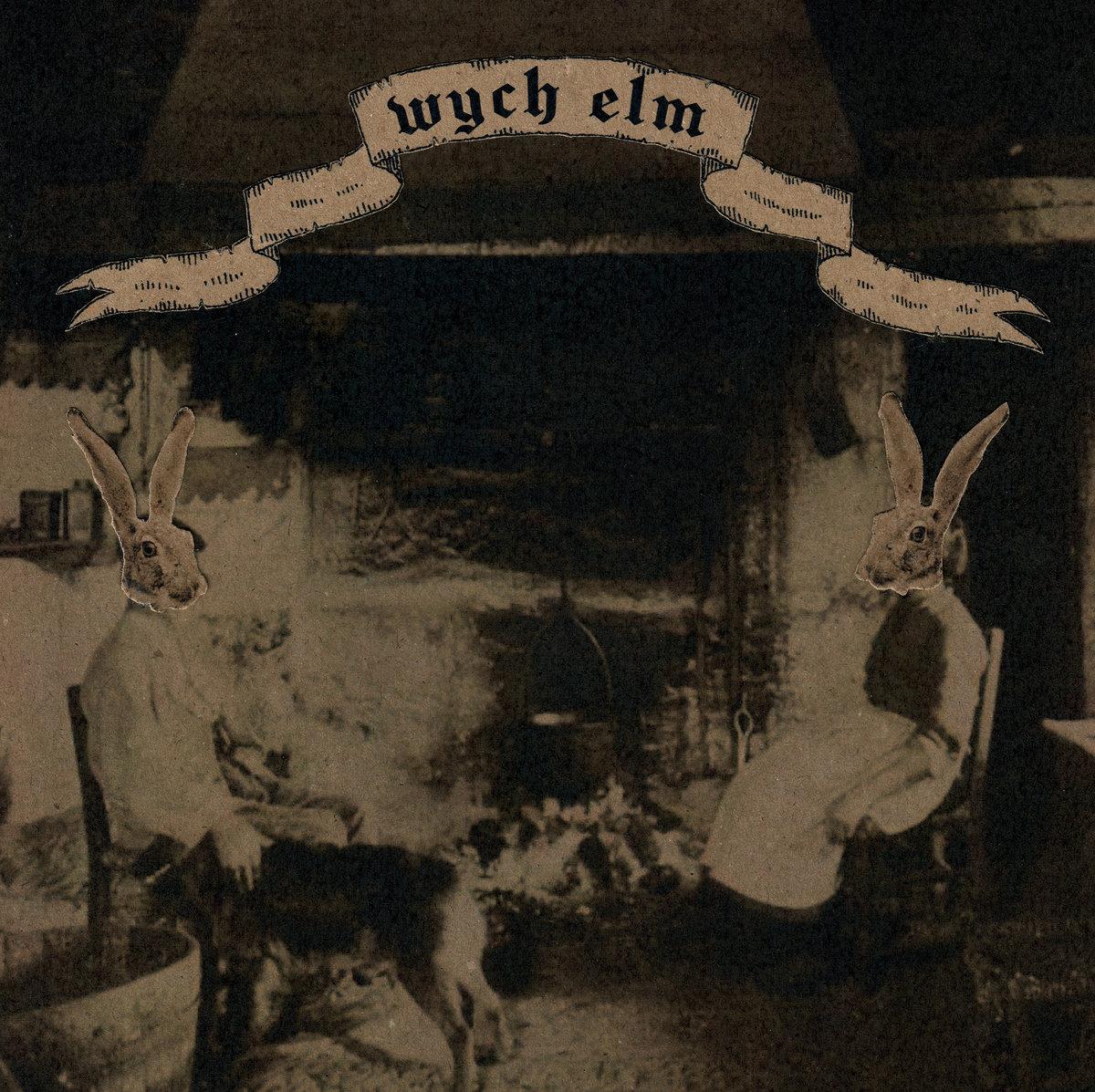 wych elm - Rabbit Wench